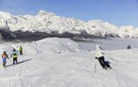 Ski Vogel