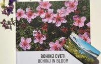 Book Bohinj in bloom