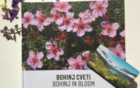 Book Bohinj in bloom